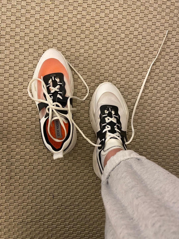 Damers sneakers - STEVE MADDEN photo 2