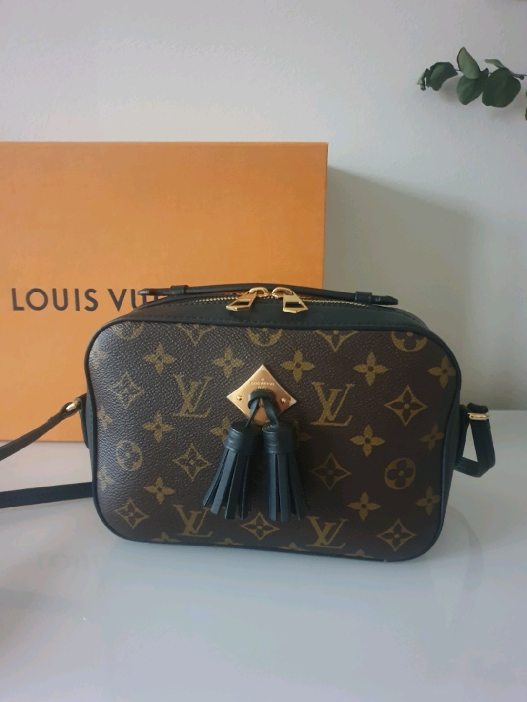 Damers tasker og punge - LOUIS VUITTON photo 1