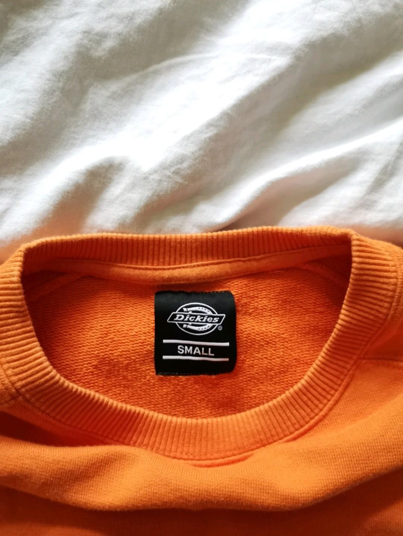 Women's hoodies & sweatshirts - DICKIES photo 3