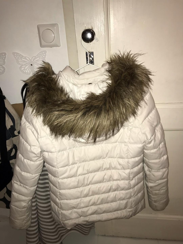 Damers frakker og jakker - TOMMY HILFIGER photo 3
